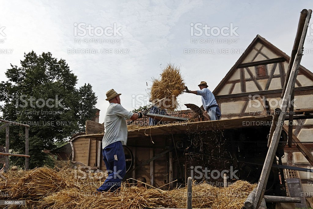 harvester at work royalty-free stock photo