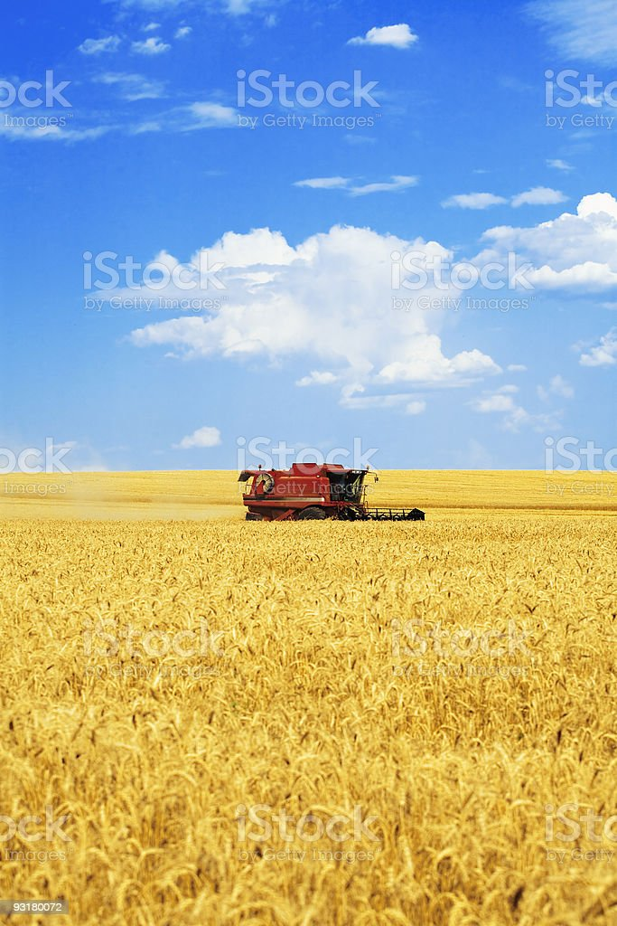 harvester in the field stock photo