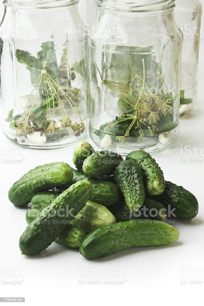 harvesting and canning cucumbers royalty-free stock photo