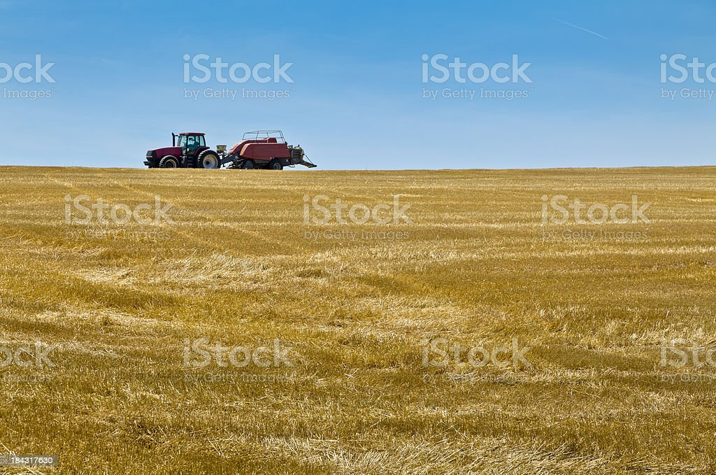 Harvesting Fields Using a Tractor With a Hay Baler stock photo