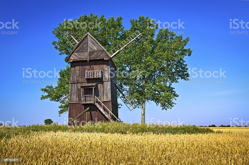 Harvesting in Poland stock photo