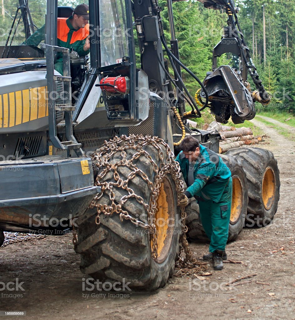 Harvesting with forest machinery stock photo