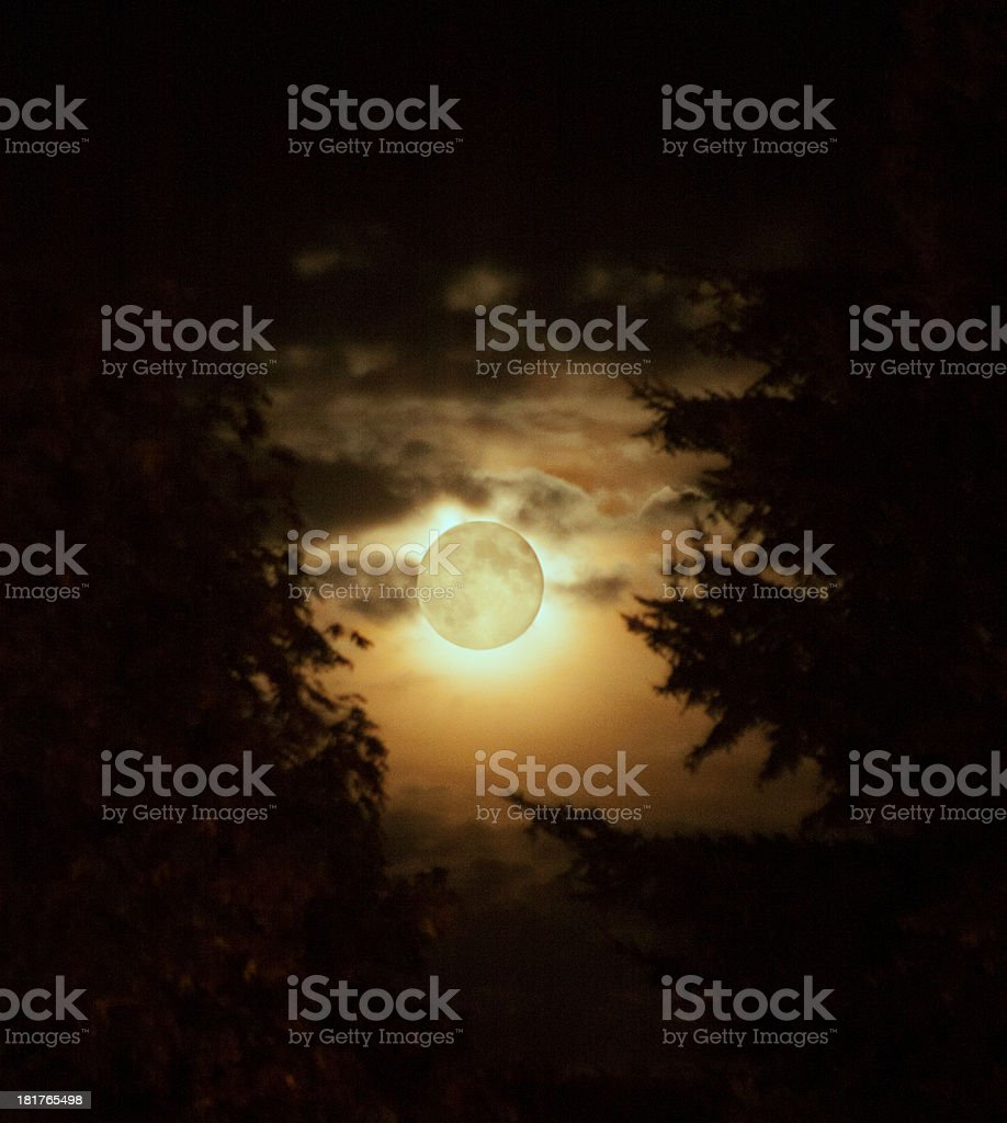 Harvet Moon in August stock photo