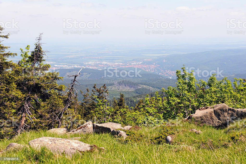 Harz National Park royalty-free stock photo