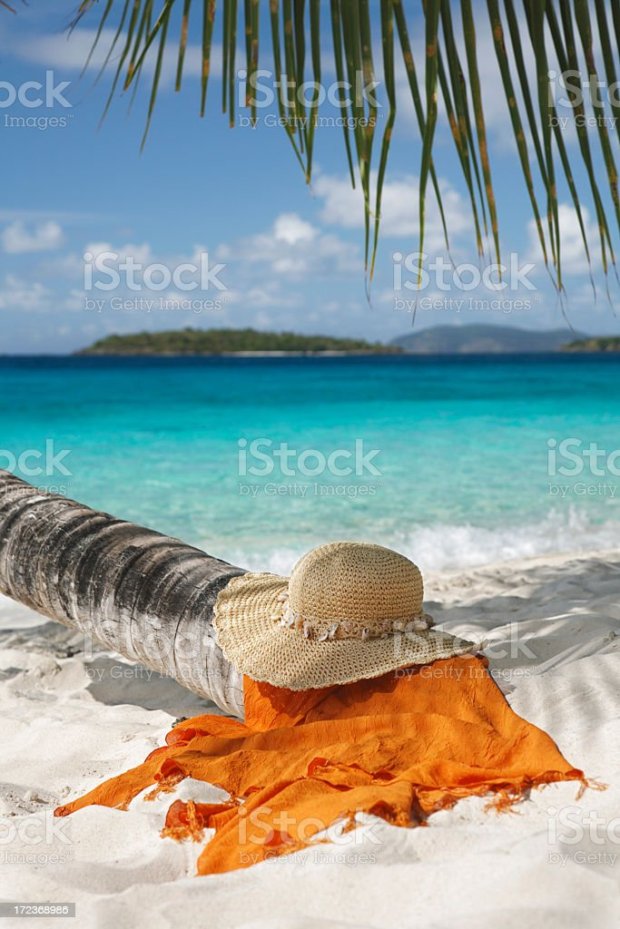 hat and sarong under palm tree royalty-free stock photo