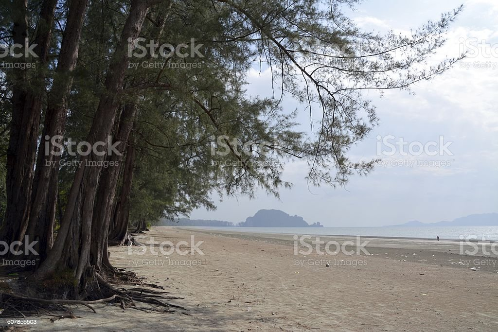 Hat Chao Mai National Park, low tide in Trang province stock photo