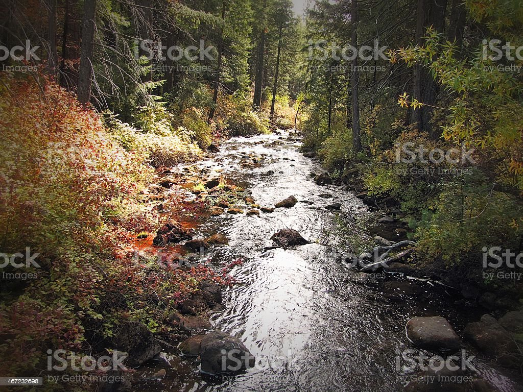 Hat Creek Lassen National Forest Home of the Hat Creek Radio Observatory stock photo