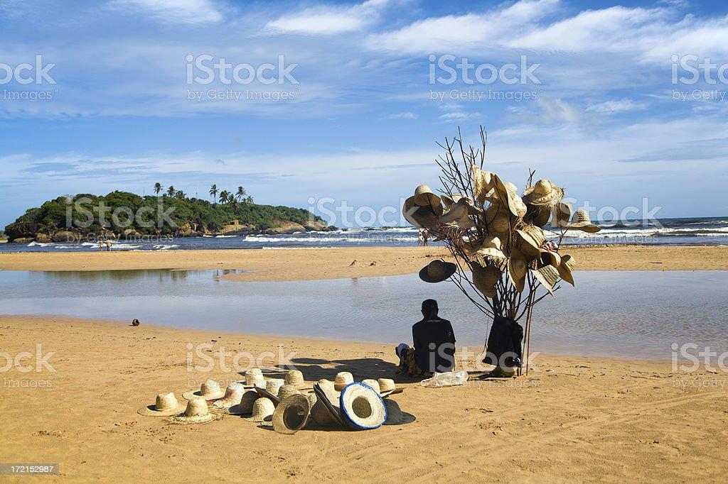 Hat tree on the beach stock photo