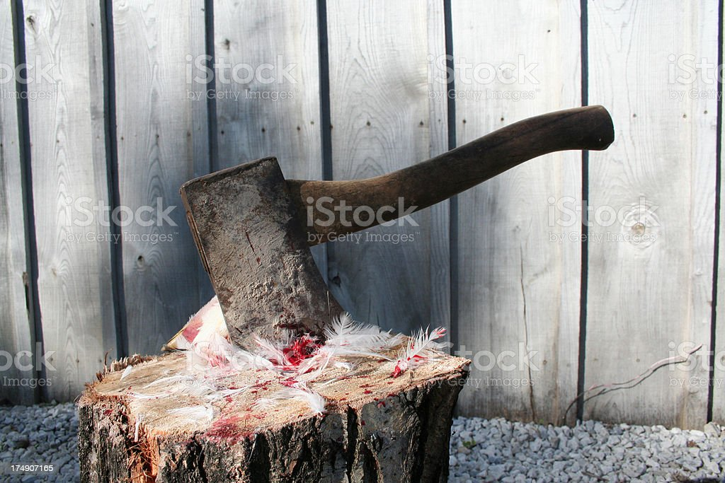 hatchet and feathers stock photo