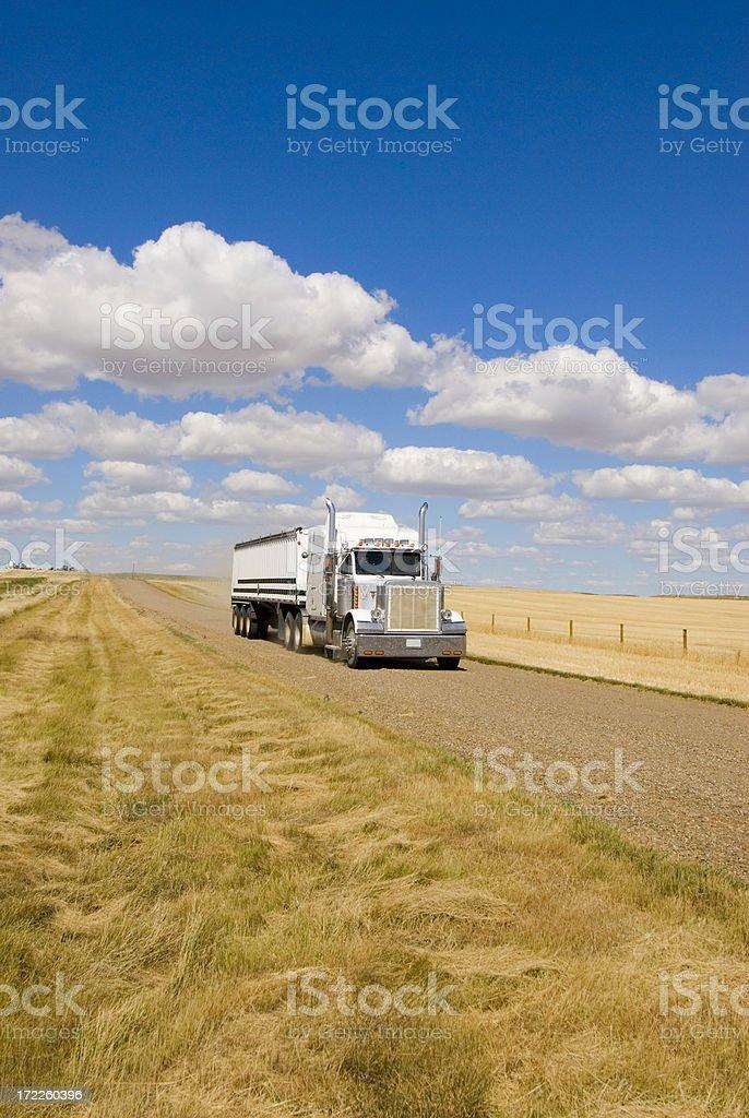 Hauling grain royalty-free stock photo