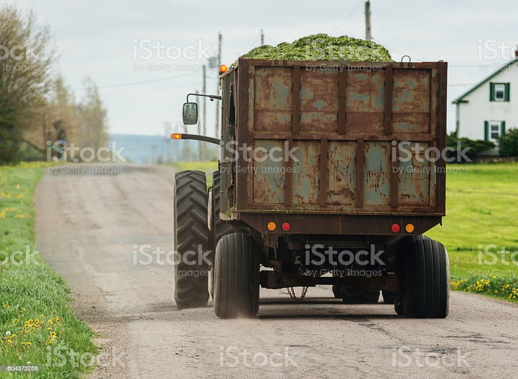 Hauling Grass to the Farm stock photo
