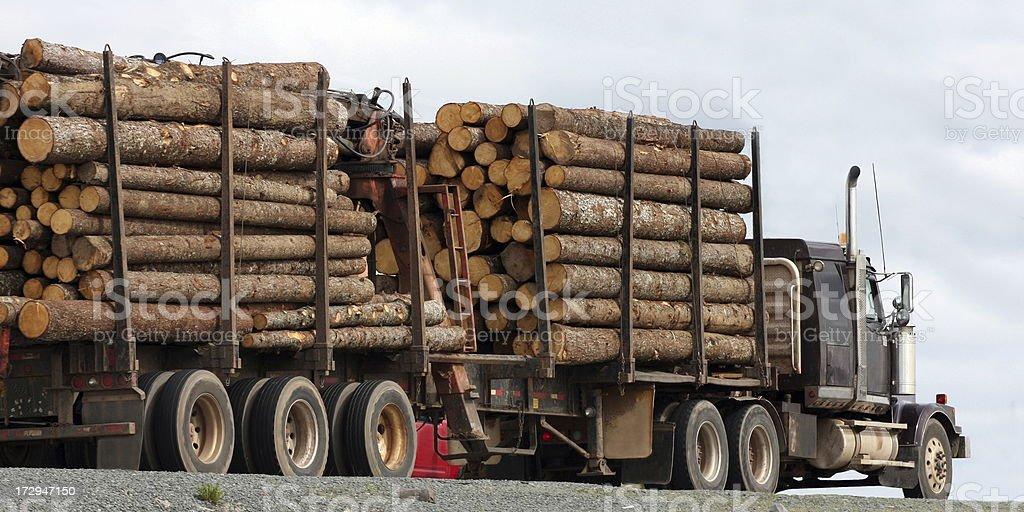 Hauling Logs stock photo