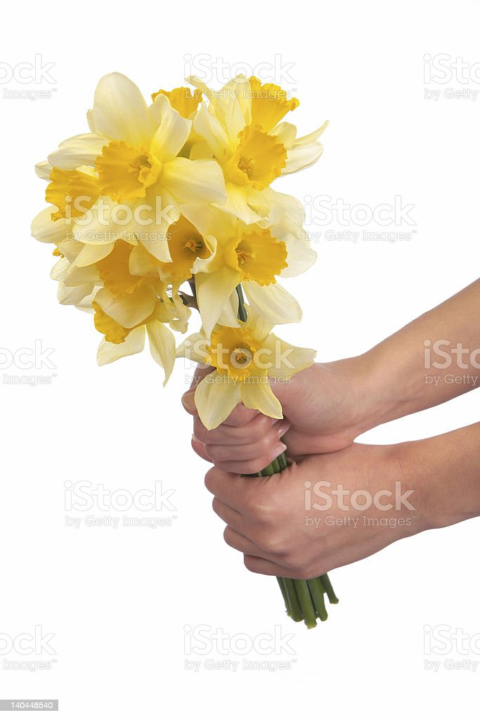 Have a flower royalty-free stock photo