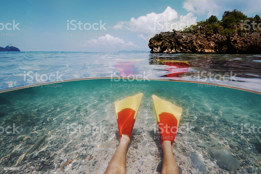 I have more fun with fins stock photo