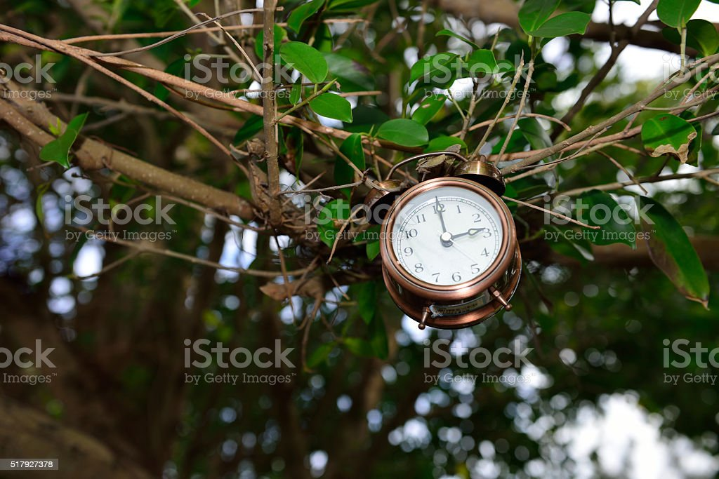 Have you time? stock photo