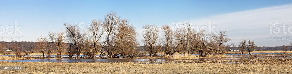 Havel River stock photo