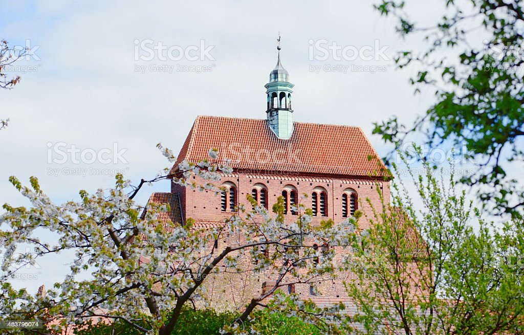 Havelberg Cathedral with cherry tree blossom in  front stock photo