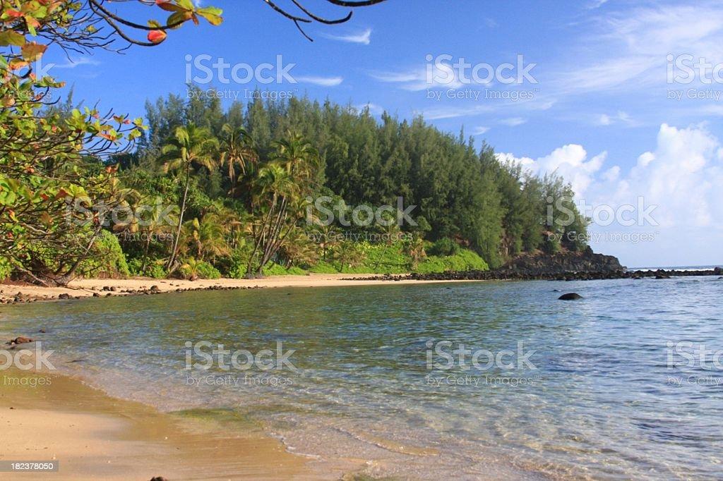 Hawaii beach bay scenic royalty-free stock photo