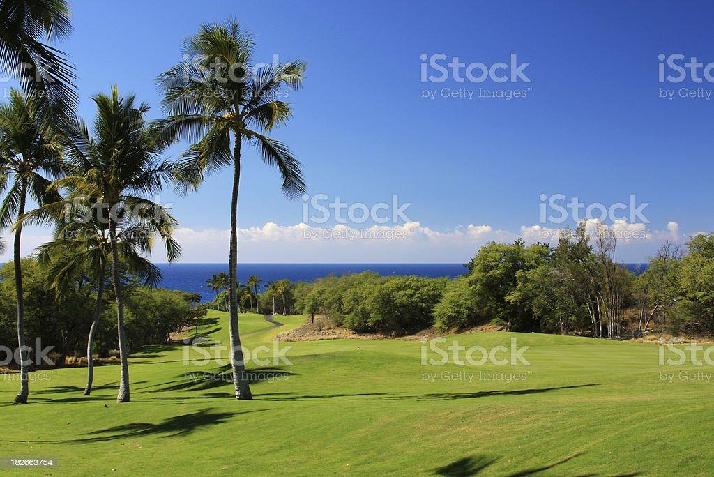 Hawaii beach front resort hotel golf course stock photo