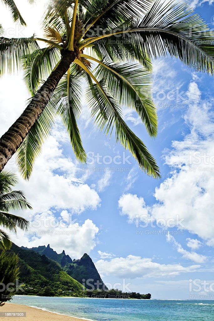 Hawaii Beach royalty-free stock photo