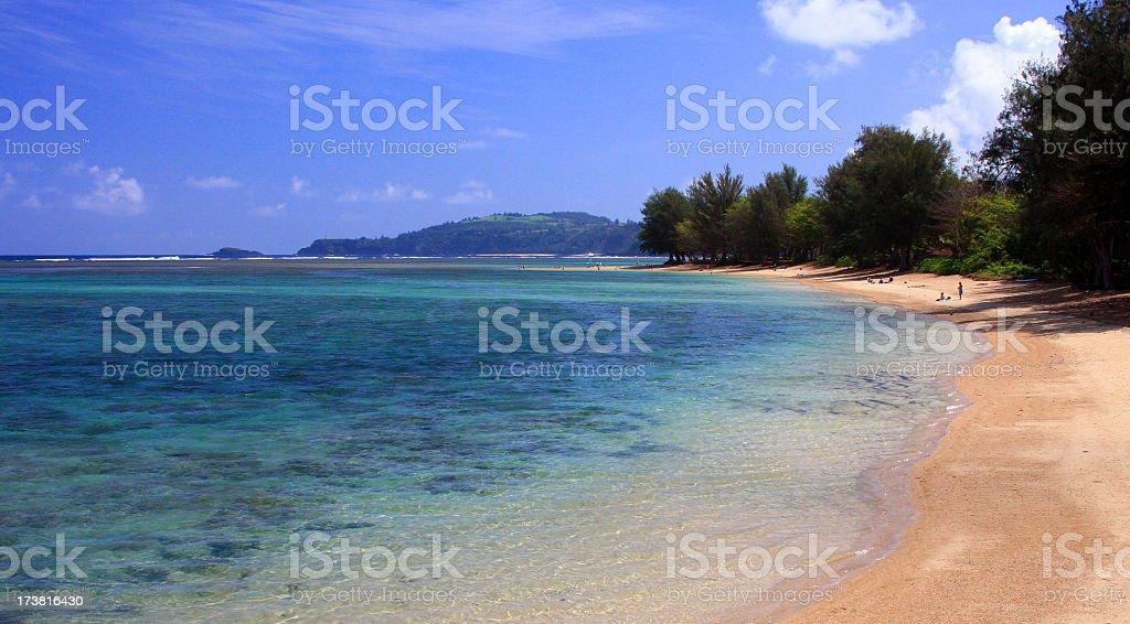 Hawaii beach scenic stock photo