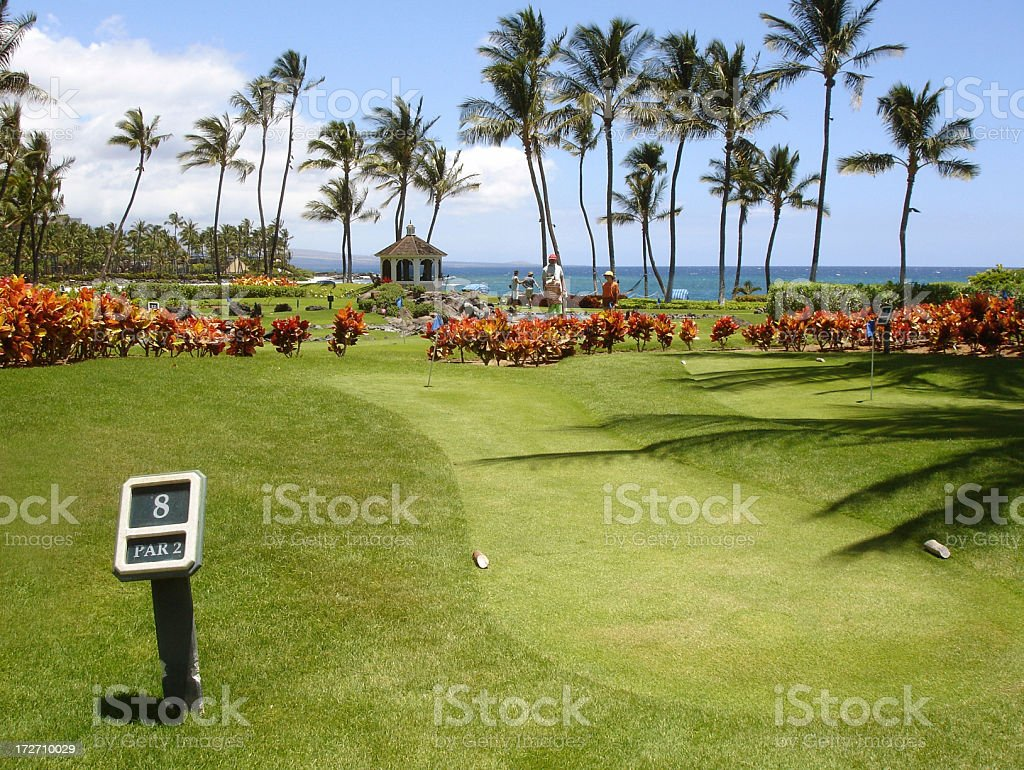 Hawaii hotel mini golf course hole royalty-free stock photo