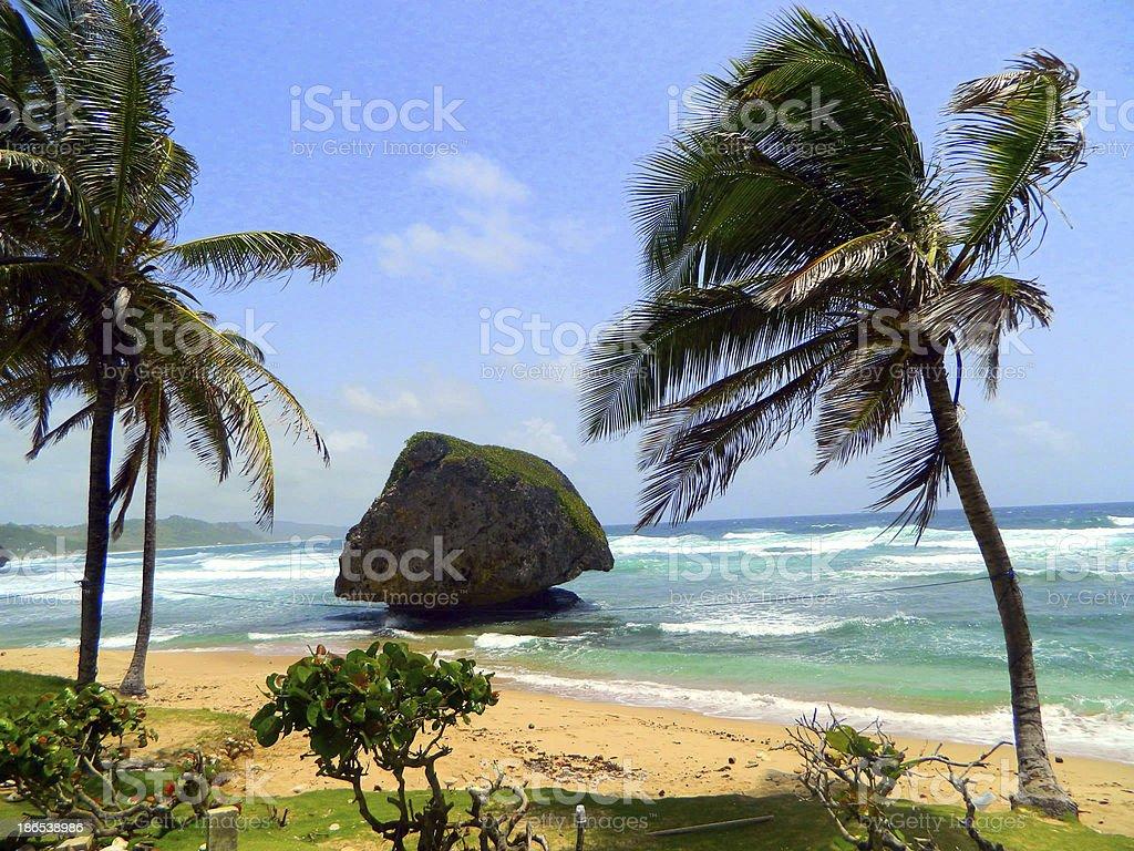 Hawaii Island stock photo