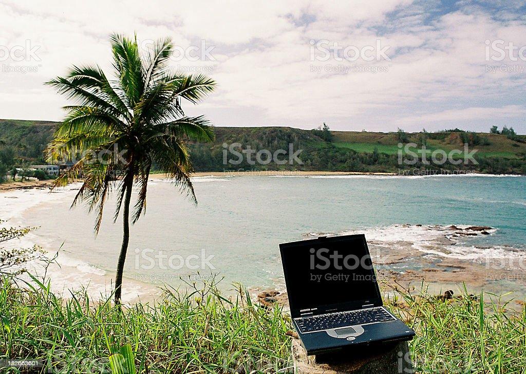Hawaii Laptop computer, palm tree and bay in Kauai royalty-free stock photo