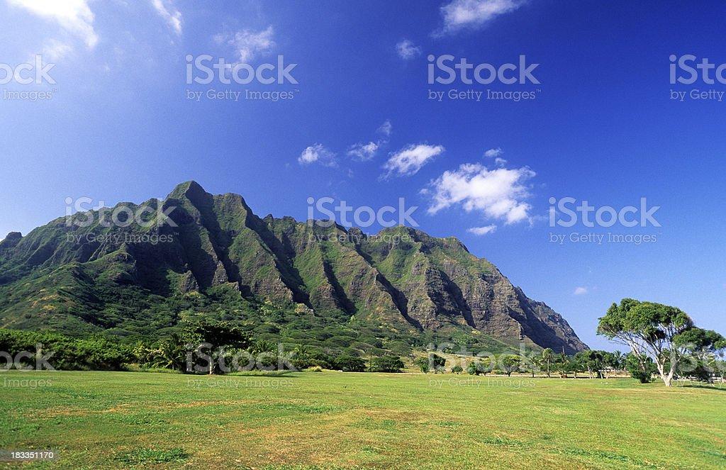 USA Hawaii O'ahu, Kualoa Ranch. royalty-free stock photo