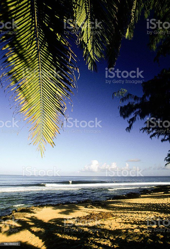 USA Hawaii O'ahu, North Shore, 'Ehukai Beach Park. stock photo