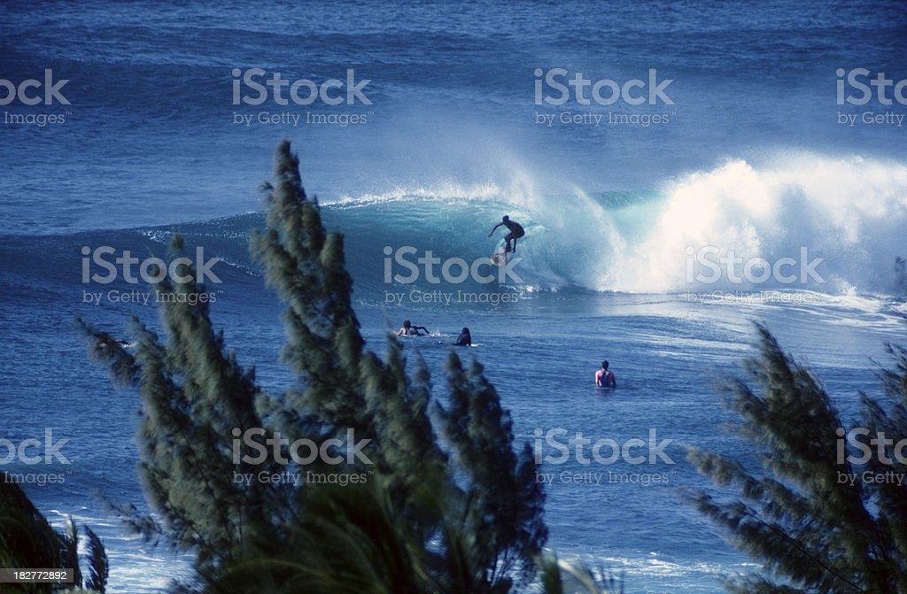 USA Hawaii O'ahu, North Shore, surfing. royalty-free stock photo