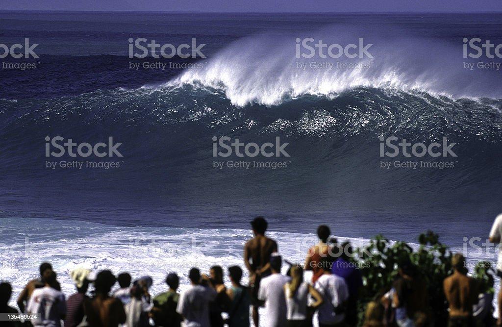 USA Hawaii O'ahu, North Shore, Waimea Bay, Wave. royalty-free stock photo