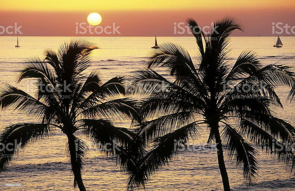 USA Hawaii O'ahu, Waikiki Beach. royalty-free stock photo