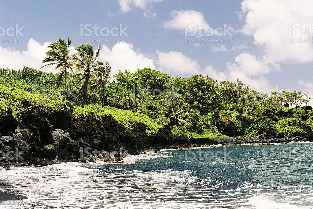 Hawaii ocean palm scenic royalty-free stock photo