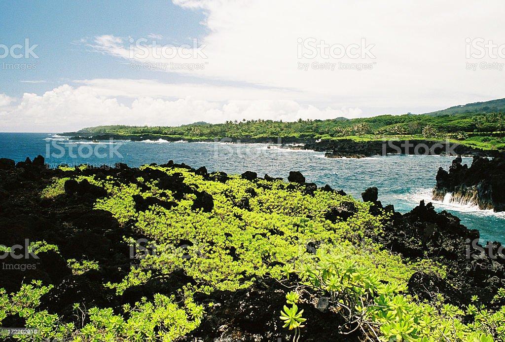 Hawaii oceanfront lava scenic stock photo