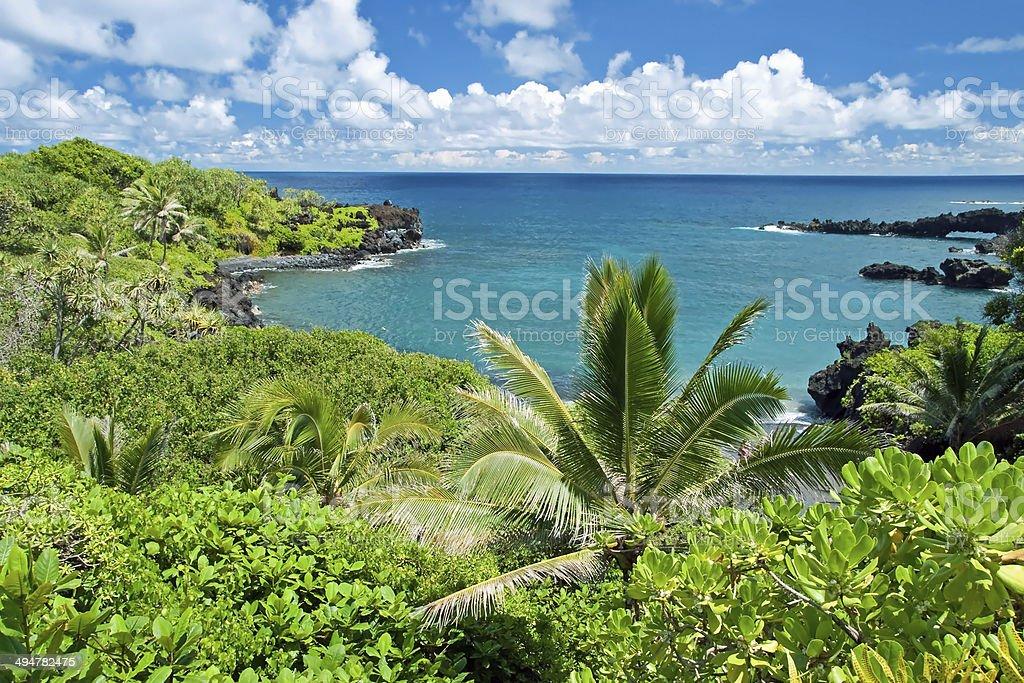 Hawaii paradise on Maui island royalty-free stock photo