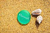 Hawaii Seashell and Sea Glass on Beach Sand Background