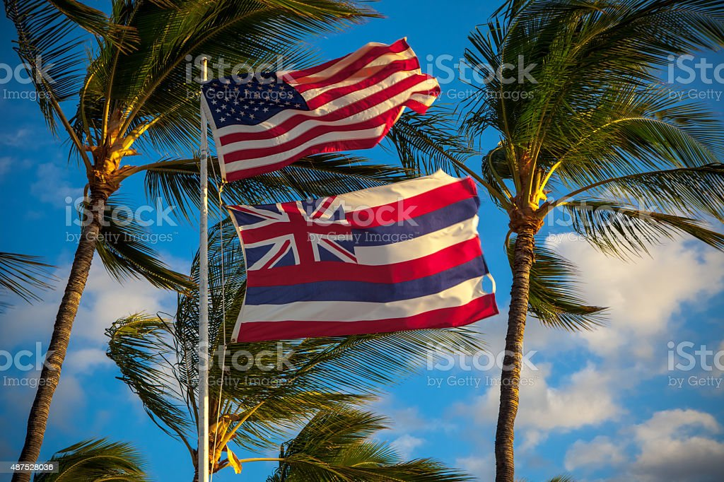 Hawaii State and US Flags stock photo