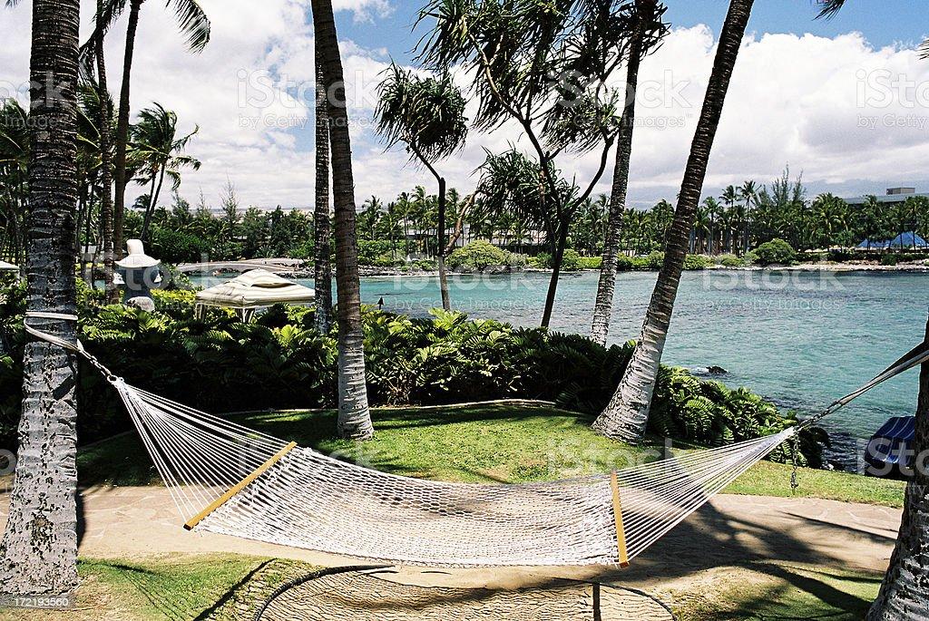 Hawaii Tropical hammock and lagoon royalty-free stock photo