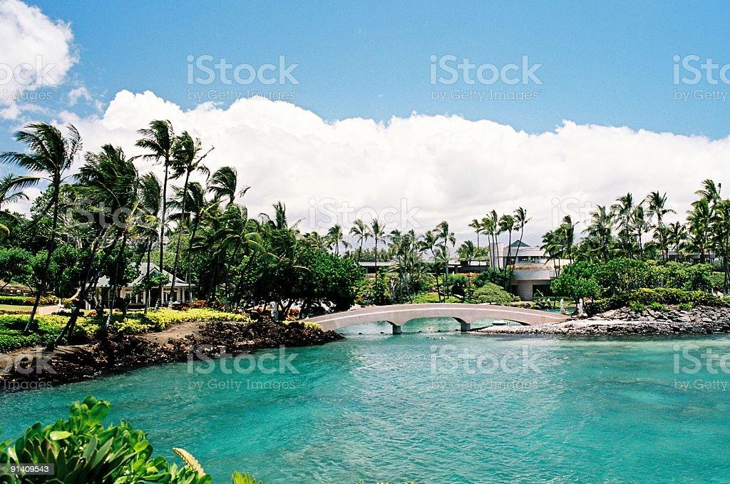 Hawaii tropical hotel lagoon stock photo