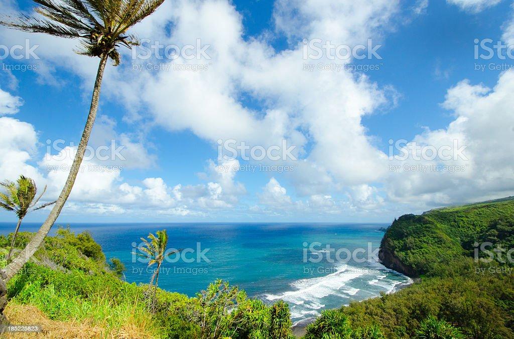 Hawaii Tropical Landscape stock photo