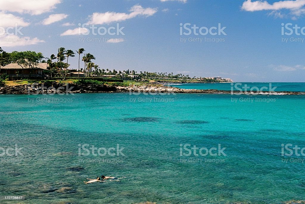 Hawaii Turquoise swim snorkel pool stock photo