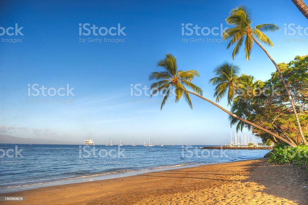 Hawaiian Beach in HDR stock photo