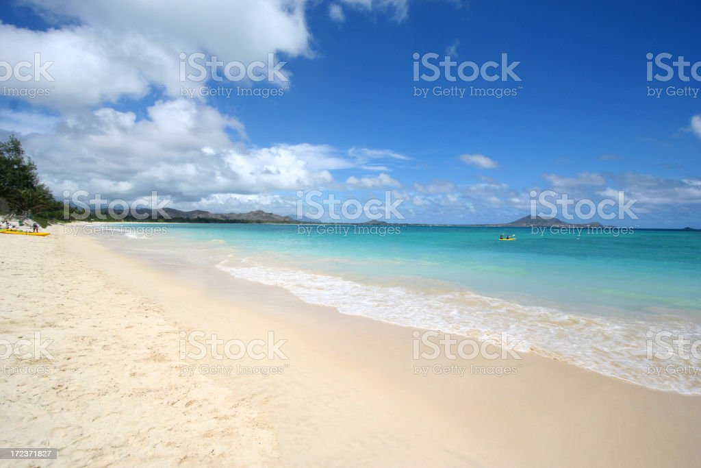 Hawaiian Beach royalty-free stock photo