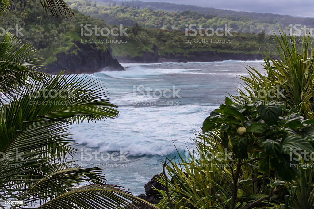 Hawaiian beach stock photo
