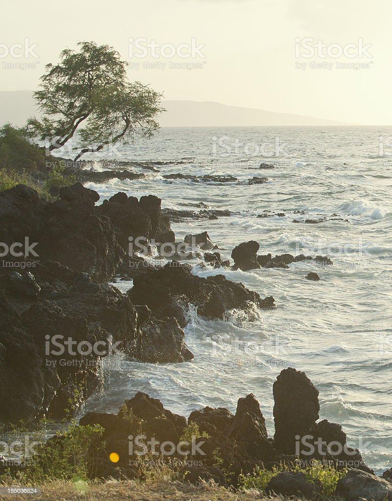 Hawaiian Coastline stock photo