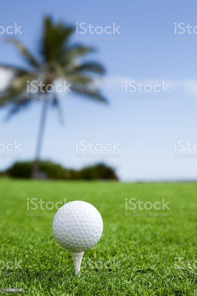 Hawaiian Golf royalty-free stock photo