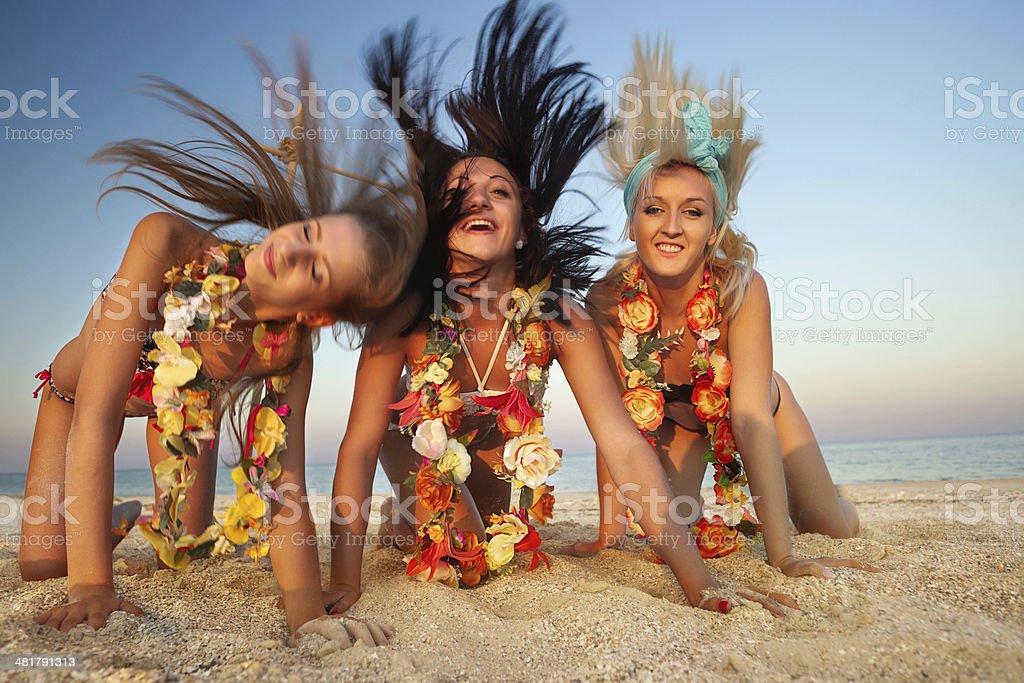 hawaiian Hula Dancer Girls stock photo