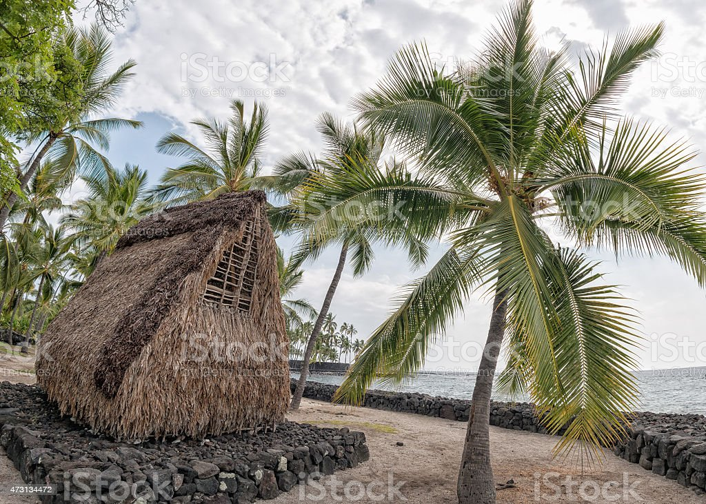 hawaiian hut on the beach stock photo