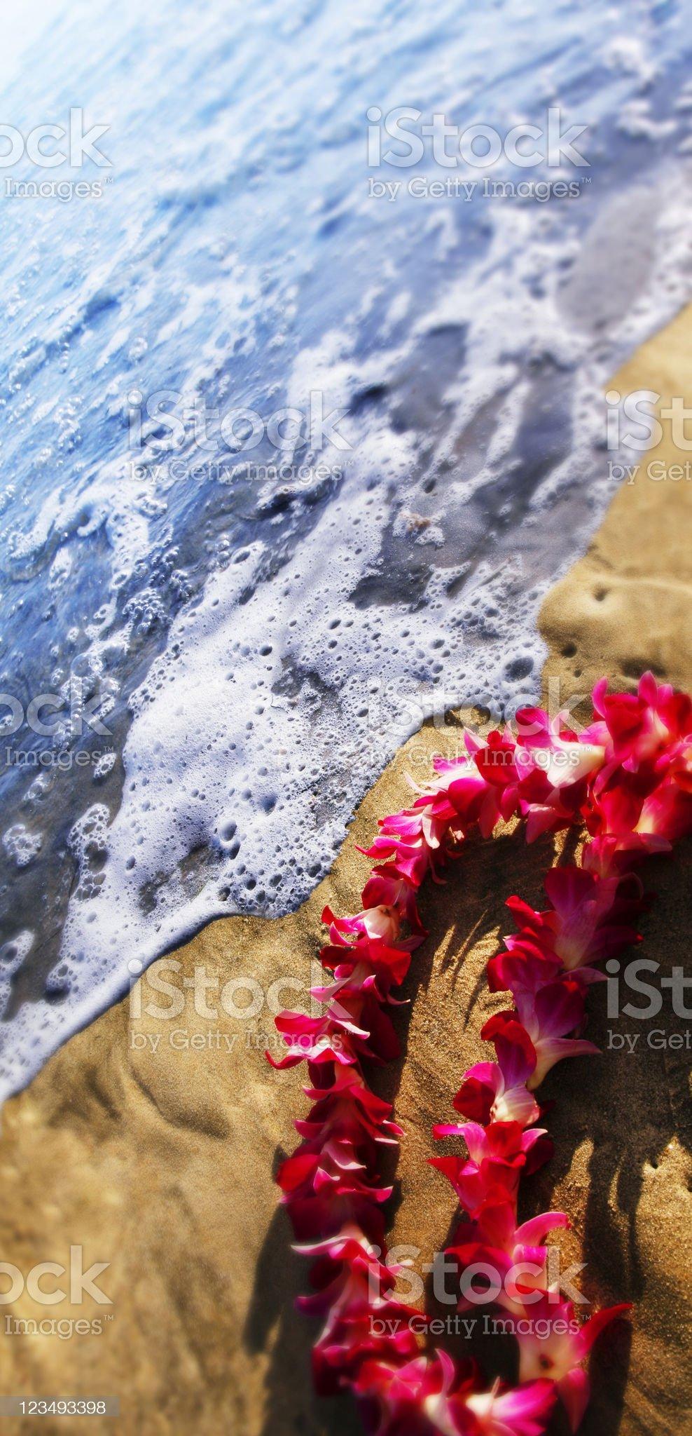 hawaiian lei at the ocean royalty-free stock photo